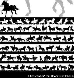 horses vector image vector image