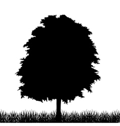 Silhouette of tree with grass vector image