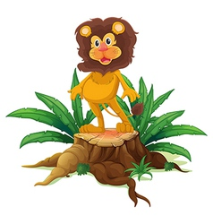 A lion standing on a stump with leaves vector