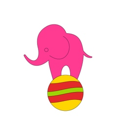 Baby circus elephant balancing on ball vector