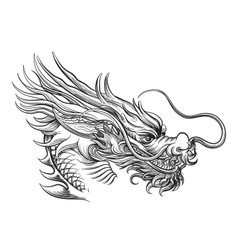 Hand drawn chineese dragon head vector