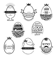 set eggs templates vector image