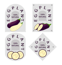 the eggplant vector image vector image