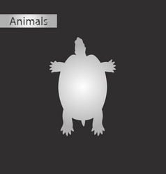 Black and white style icon of turtle vector