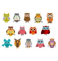 Cartoon cute owl birds vector image