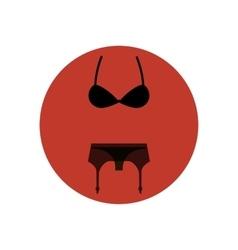 Lingerie set icon vector image