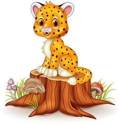 Cute baby cheetah sitting on tree stump vector