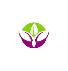 beauty lotus abstract logo vector image vector image