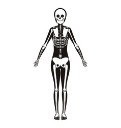 Silhouette woman system bone with bone vector