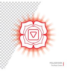 muladhara - chakra of human body vector image