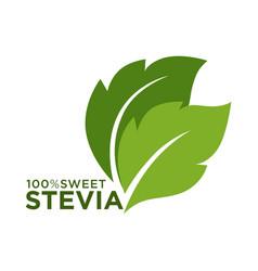 Green symbol of stevia or sweet grass 100 percent vector