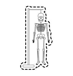 human skeleton icon image vector image