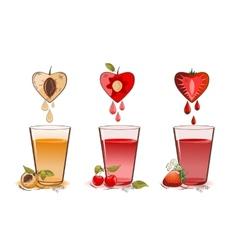 Fruits juice vector image vector image