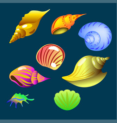 Set of sea shell on the dark background vector