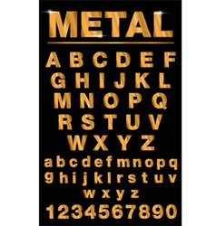 Golden metallic shiny letters isolated vector