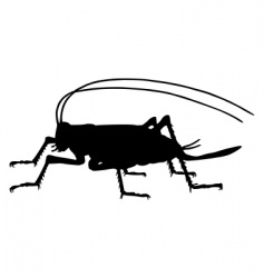 Cricket silhouette vector
