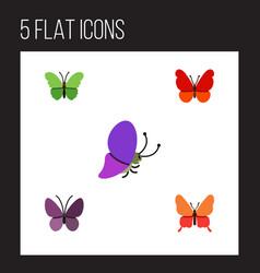 Flat monarch set of danaus plexippus summer vector