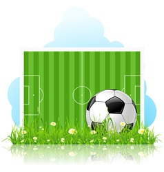 Soccer ball on green grass vector