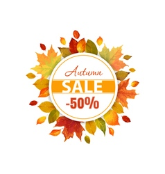 Autumn sale - colorful autumn leaves background vector