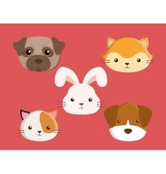 cats dogs rabbit pets design vector image