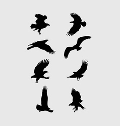 Eagle flying silhouette vector