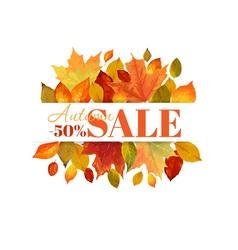 Autumn Sale - Colorful Autumn Leaves Background vector image