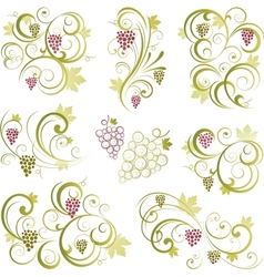 Grapevine motifs vector image