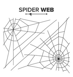 halloween spider web black spider web vector image