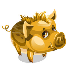 cute little golden boar animal isolated vector image