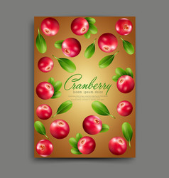 lliustration with realistic cranberries isolated vector image vector image