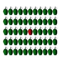Granade icon vector image