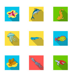 Marine and river inhabitants fish whales vector