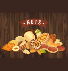 nut pile as banner with kernel and shell sign vector image