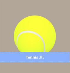 yellow tennis balls vector image