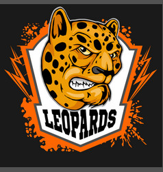 leopard head mascot for sport team vector image
