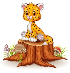 Cartoon happy baby cheetah sitting on tree stump vector