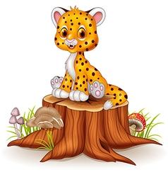 Cartoon happy baby cheetah sitting on tree stump vector