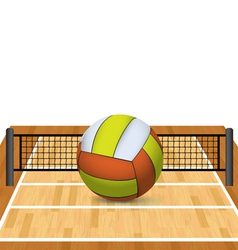 Volleyball on a court and net vector