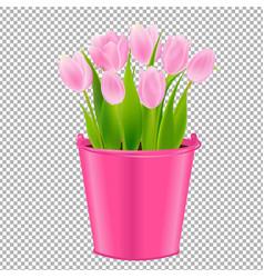 pink tulip in pot vector image