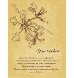 Flower vintage postcard with place for text vector