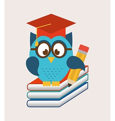 owls school vector image