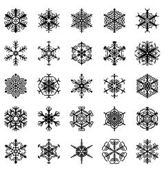 snowflakes ornamental vector image