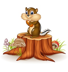 Cartoon chipmunk holding peanut on tree stump vector image vector image
