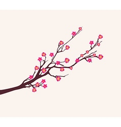 Cherry blossom for chinese new year and lunar new vector