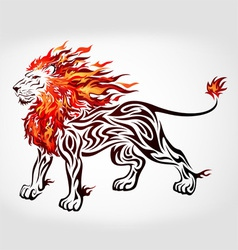 tribal flame lion vector image vector image
