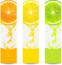 Banners with Fresh Citrus Fruit vector image