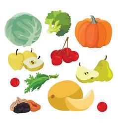 cabbage pumpkin broccoli melon greens cherry vector image vector image