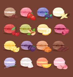 macarons tasty cake set different colors macaroon vector image vector image
