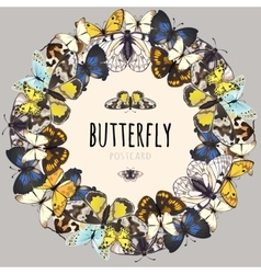 Postcard set of butterflies with space for text vector image