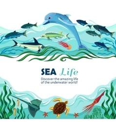 Sea underwater life cartoon vector